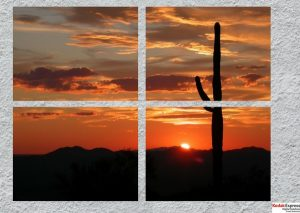 voyage cactus et soir d'été en panneau photo Paris